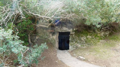 הגן היפני בחפציבה 11
