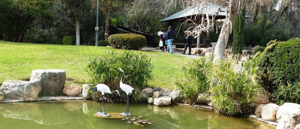 הגן היפני בחפציבה 4